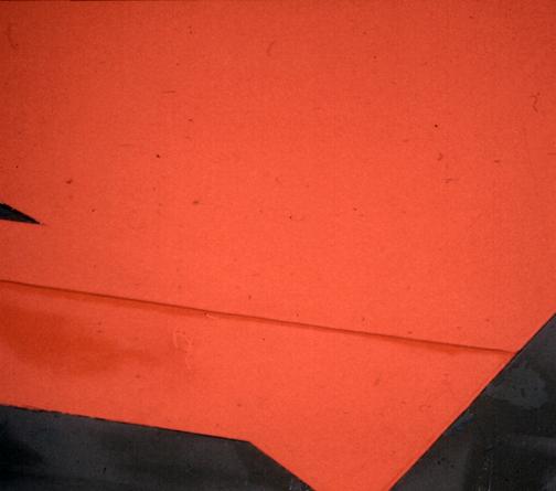 Redtail detail