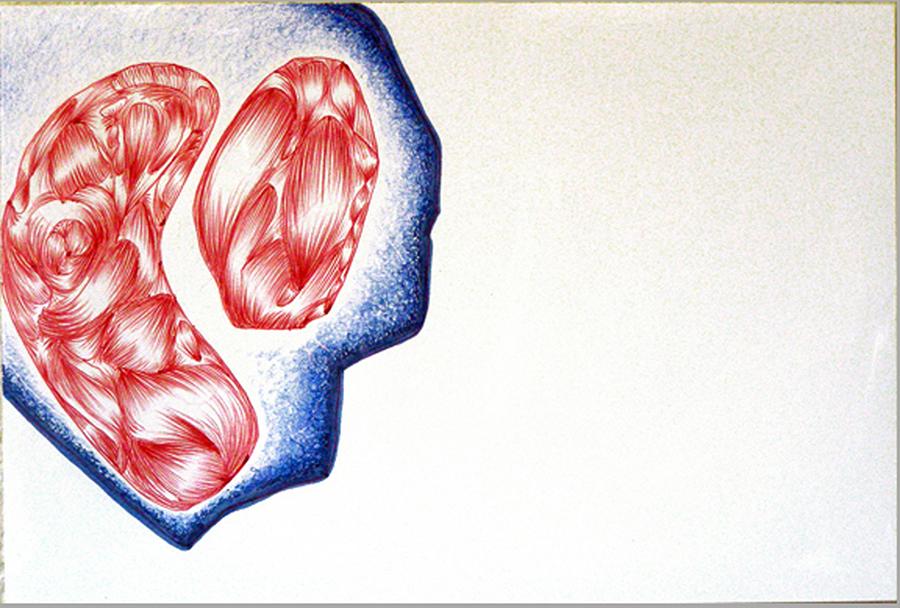Asteroid Fetus