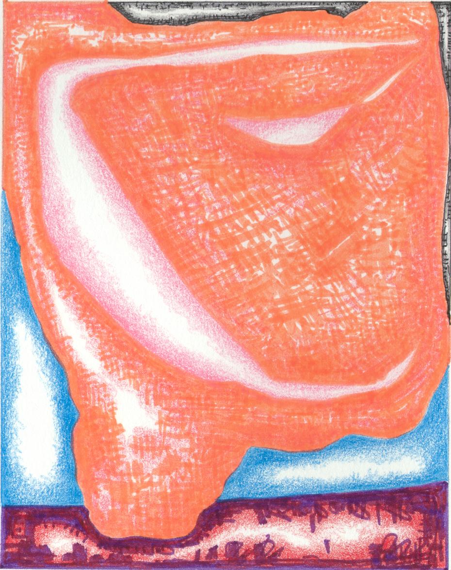 Imaginal Cells 8