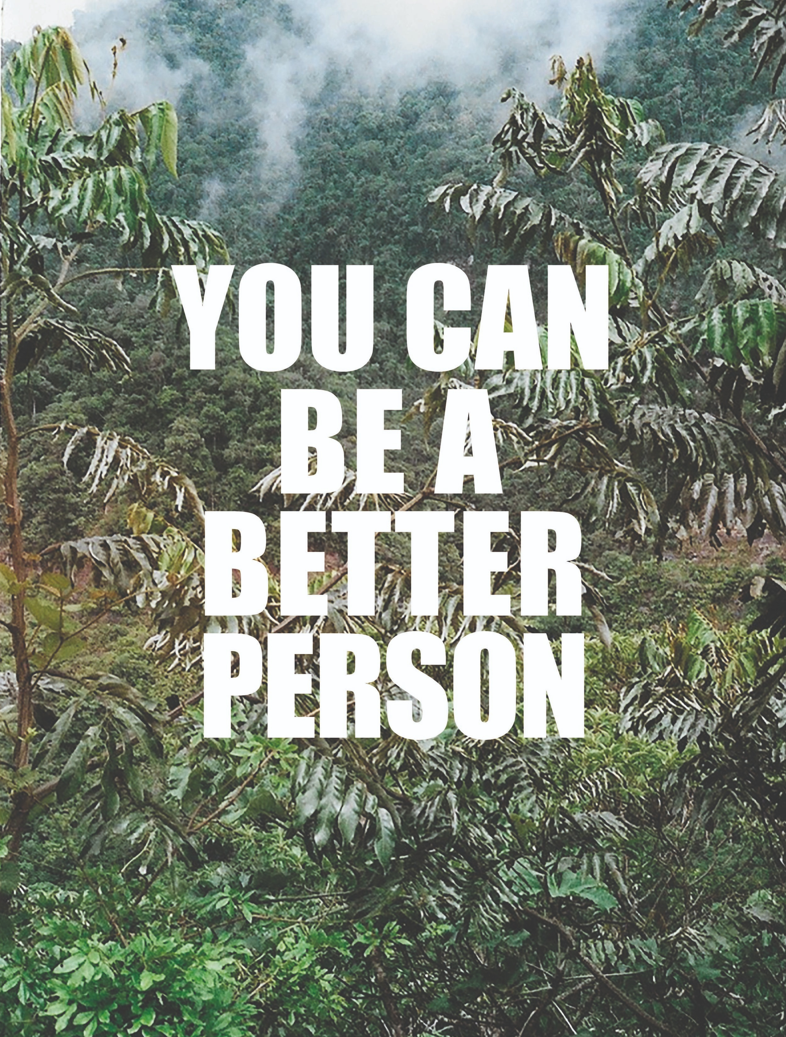 Better Person, Promises From Paradise 2018 - photography and graphic