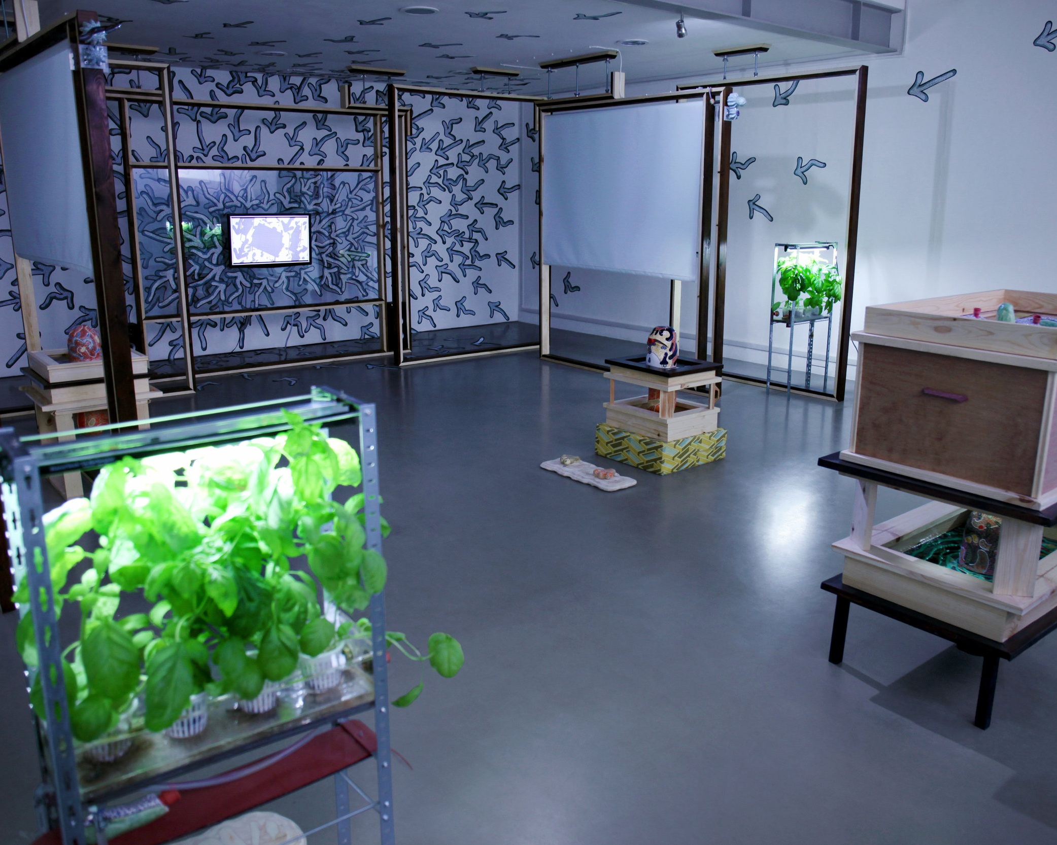 Video, Installation 2018