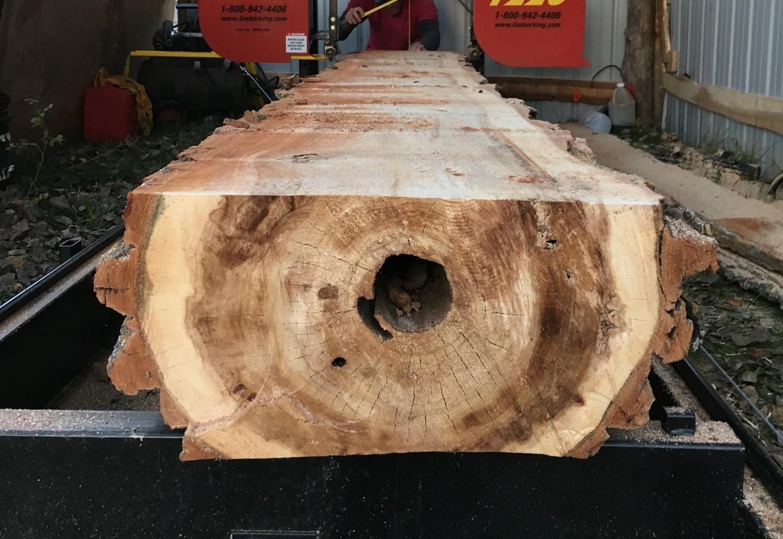 sawmill-1049779_1920.jpg