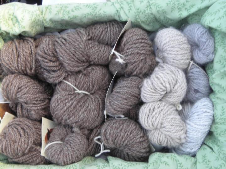 yarn+group.jpg