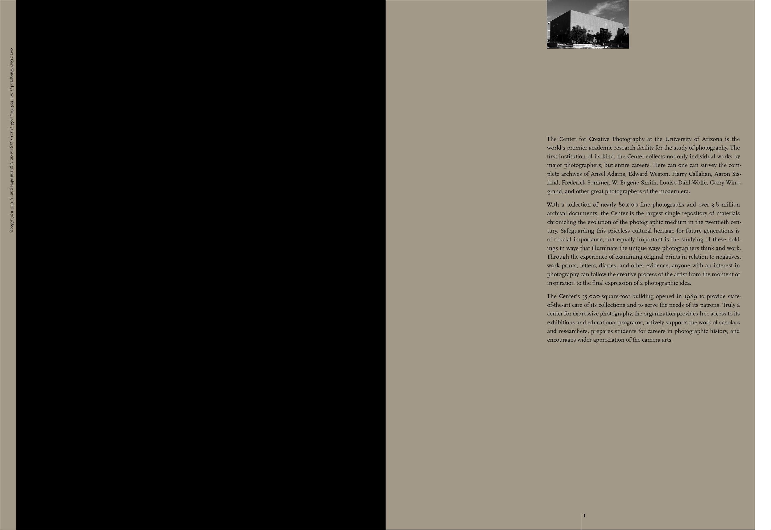 donor_brochure_study_4_portfolio_2.jpg