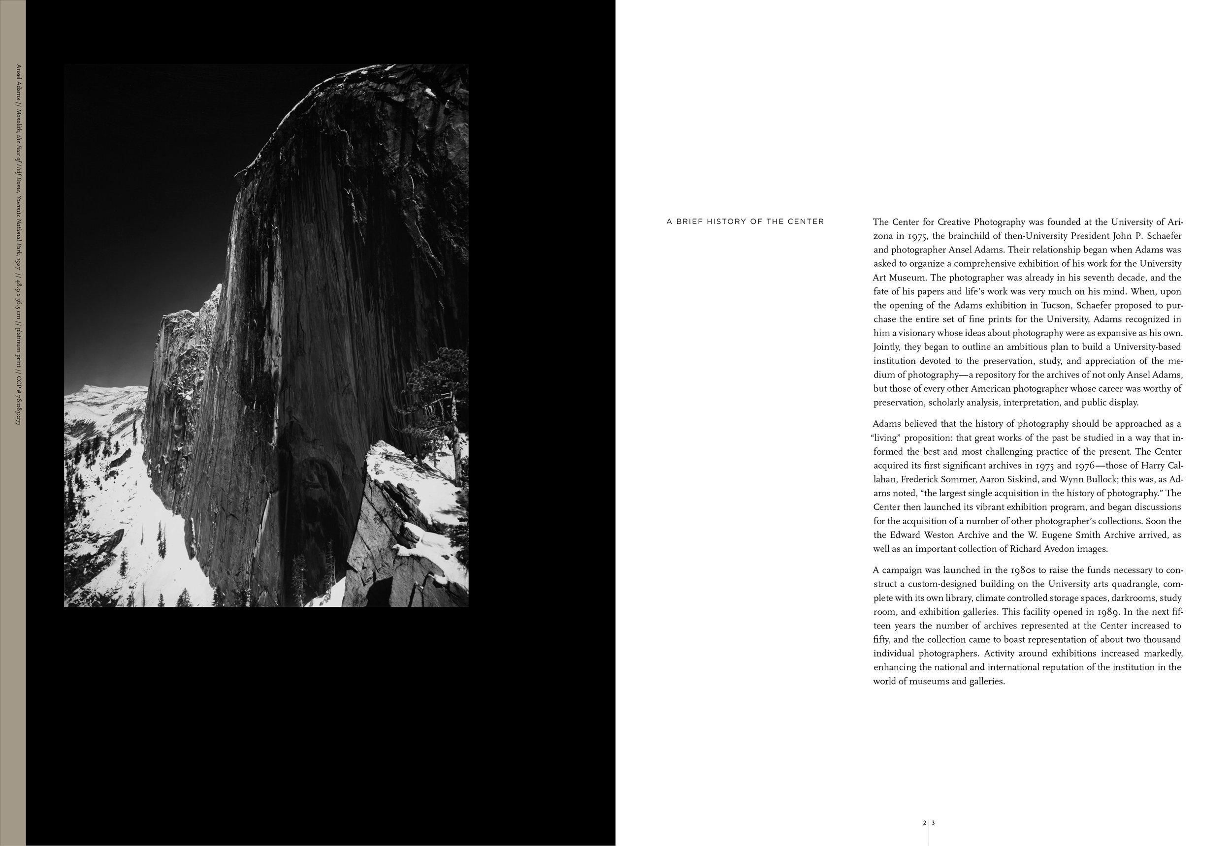 donor_brochure_study_4_portfolio_3.jpg