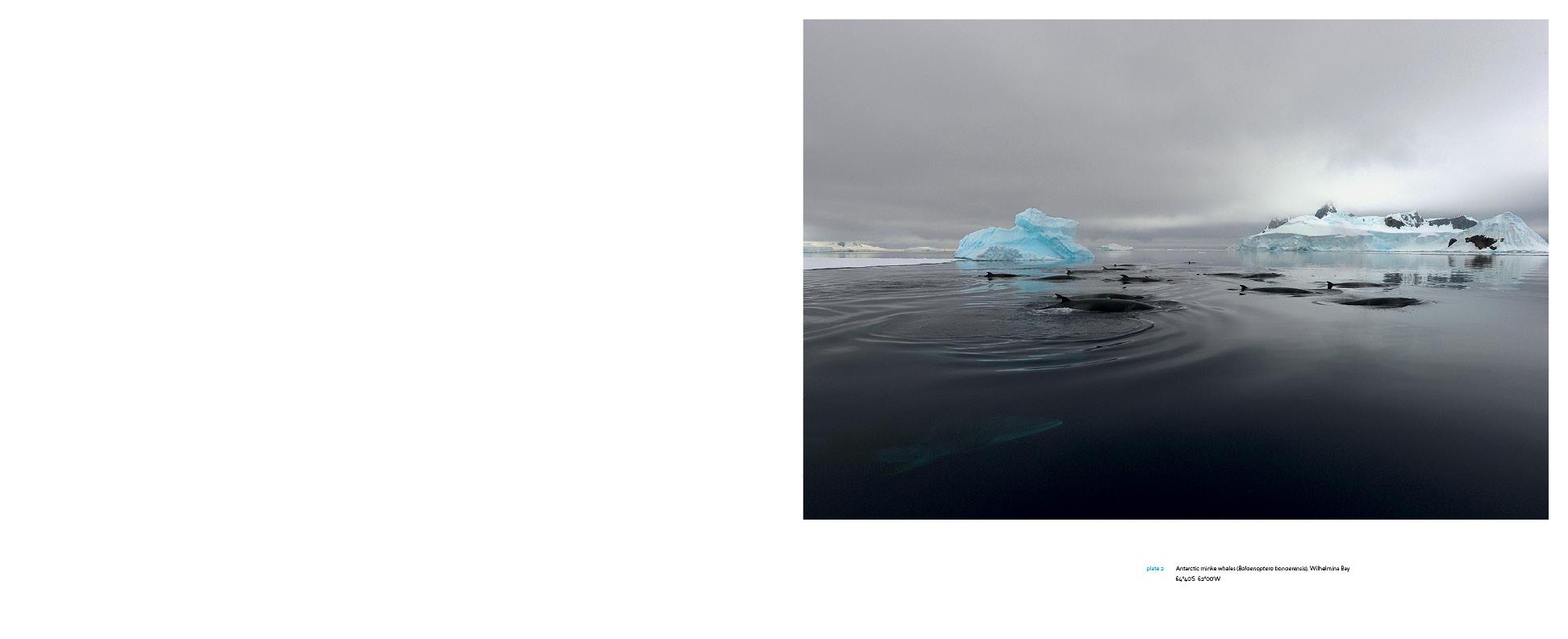 Antarctica_v13_4.jpg