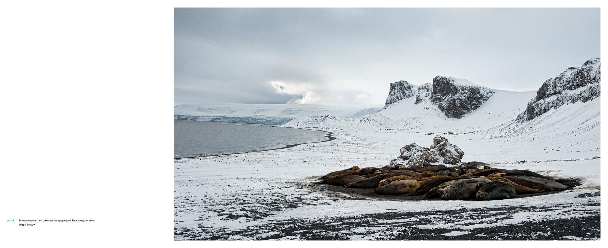 Antarctica_v13_6.jpg