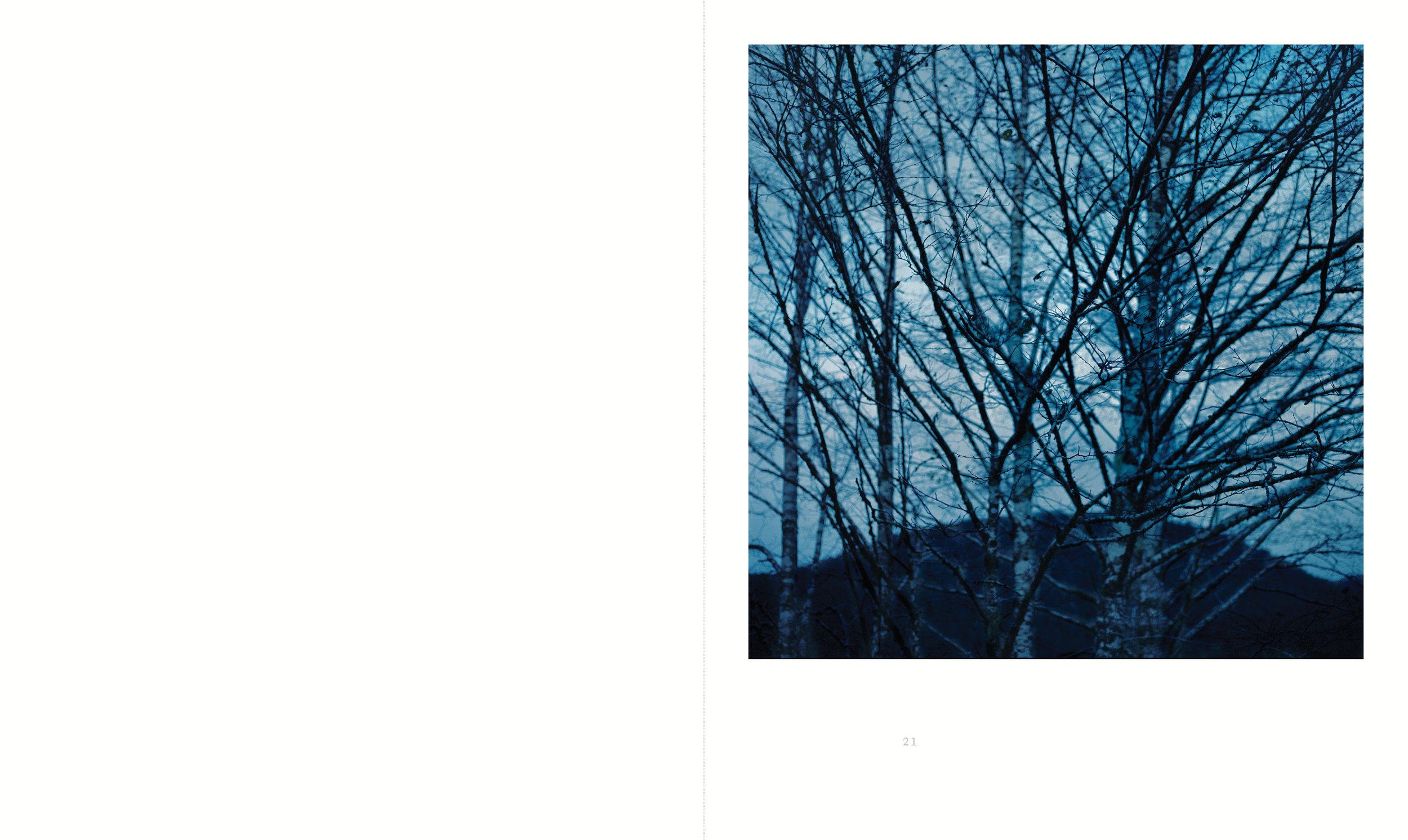 wilderness_v17_spread_9.jpg