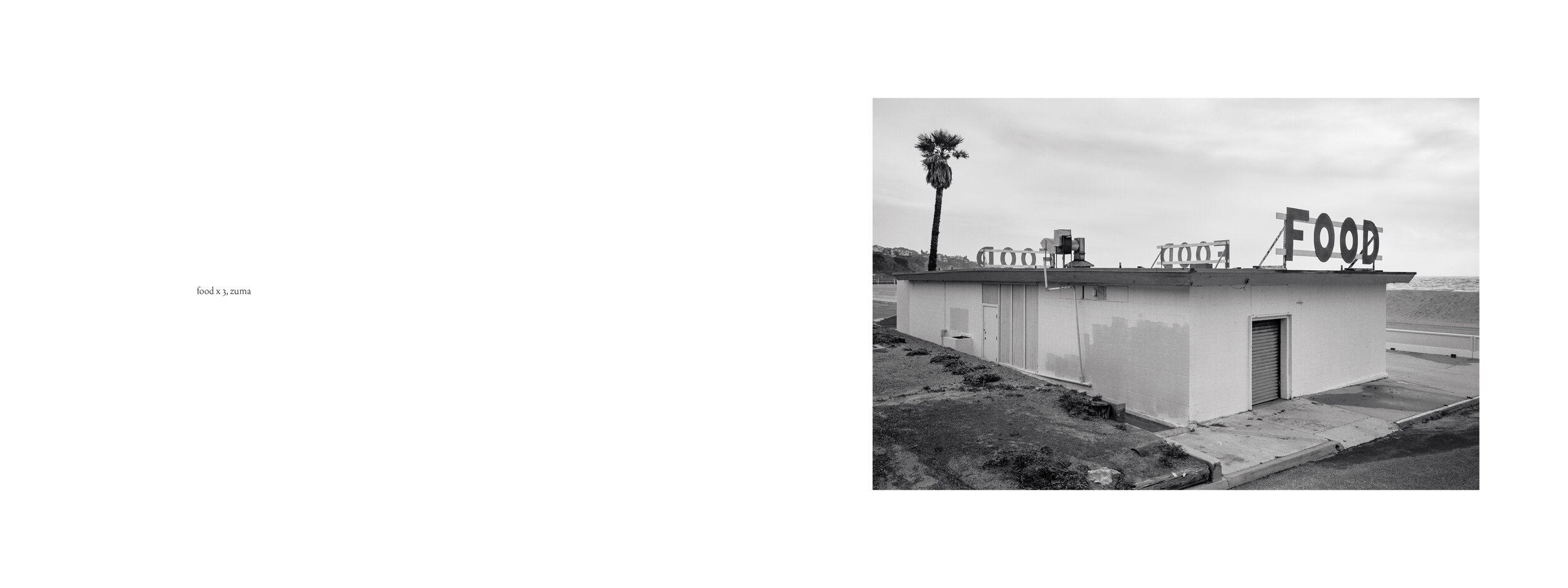 Peterson_Los_Angeles_9.jpg
