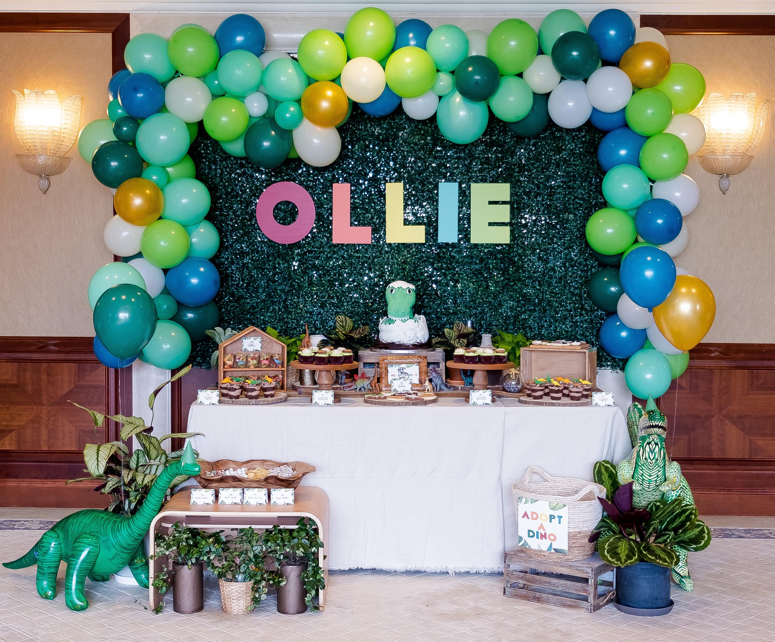 Ollie-36.jpg