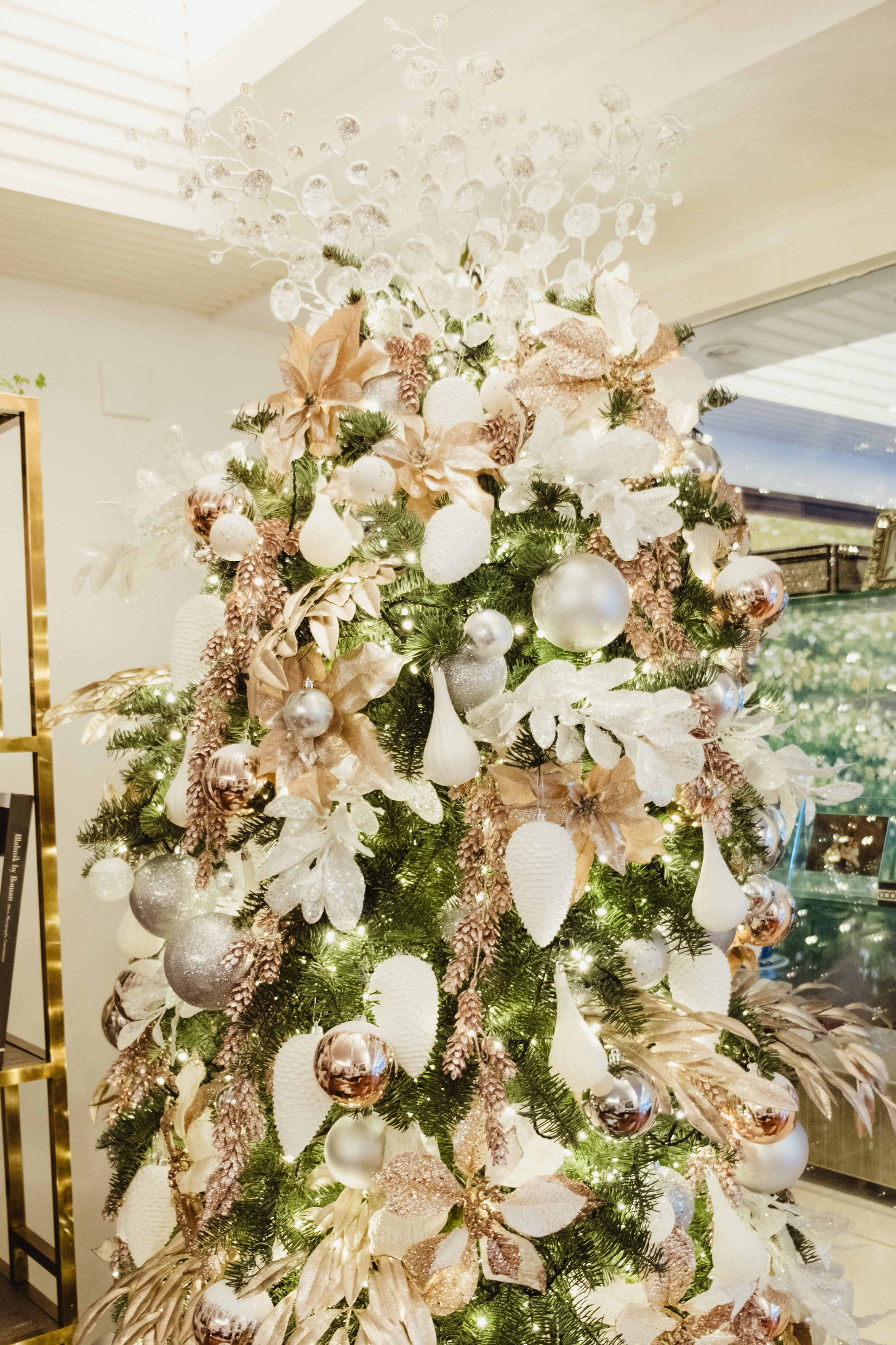 Brosnan Christmas-9.jpg