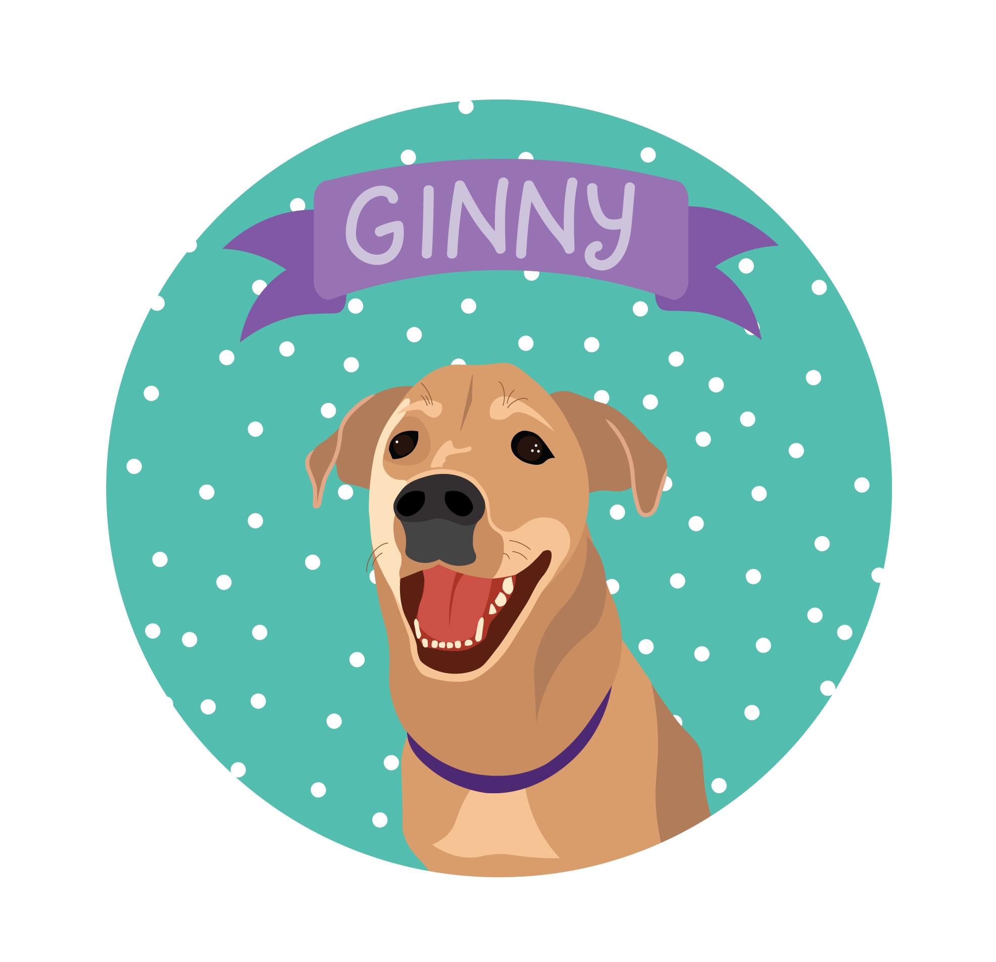 ginnyv8.jpg
