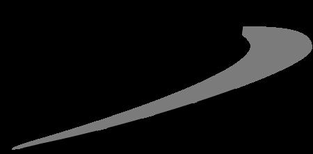 DSI-Logo-BW_450x222.png