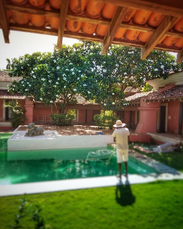 Behind the scenes at Avanilaya. Our incredible staff is part of what keeps this place a cut above the rest. Book your stay now! Details in bio link. . . . #villarental #boutiquevilla #luxuryvilla #goatravel #goaindia #getaway #frangipani #courtyardpool #behindthescenes #nature_seekers #incredibleindiaoffical #villapadimunu