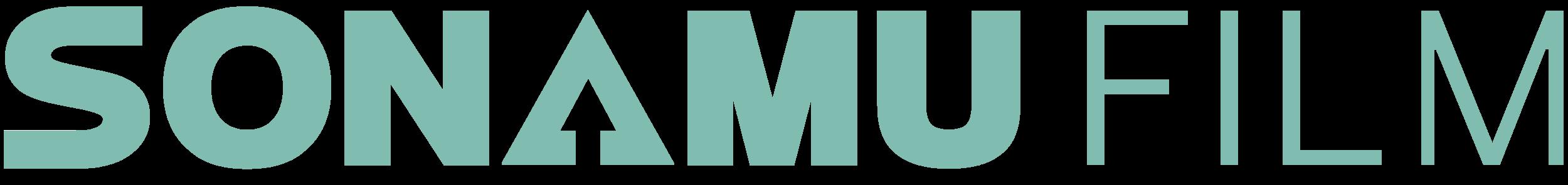 Sonamu Logo Mint.png