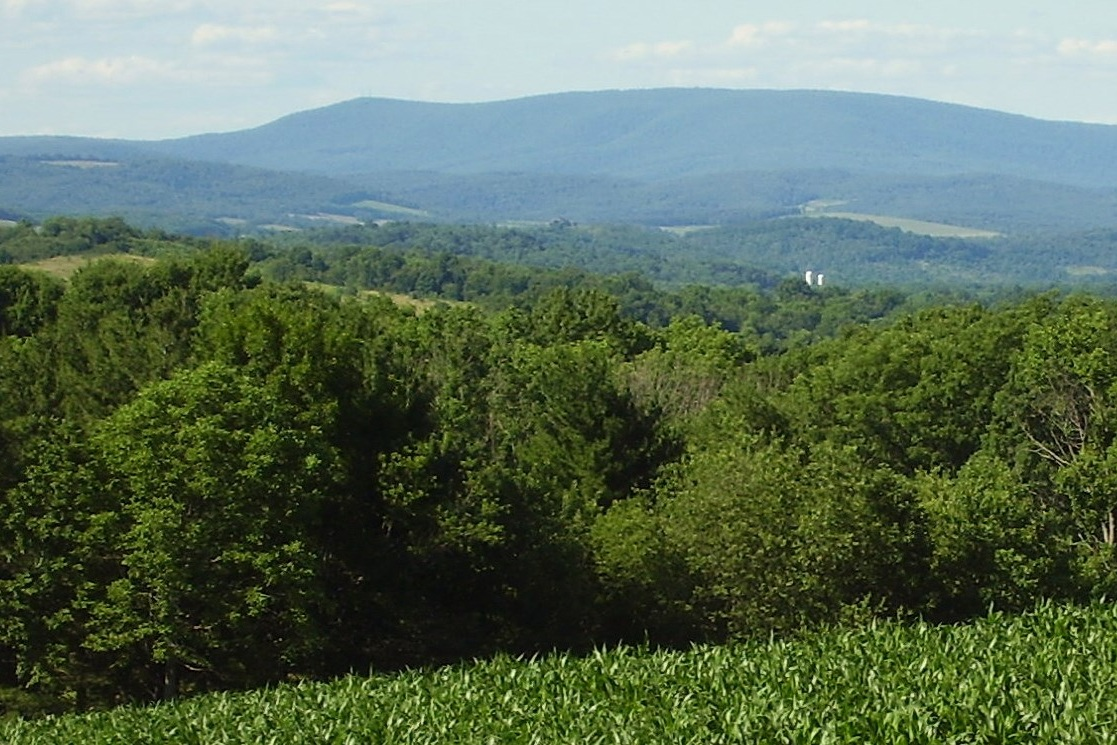 Blue Knob Mountain (3,146 ft), from Helixville - Photo Credit: Calzarette at en.wikipedia [Public domain], from Wikimedia Commons