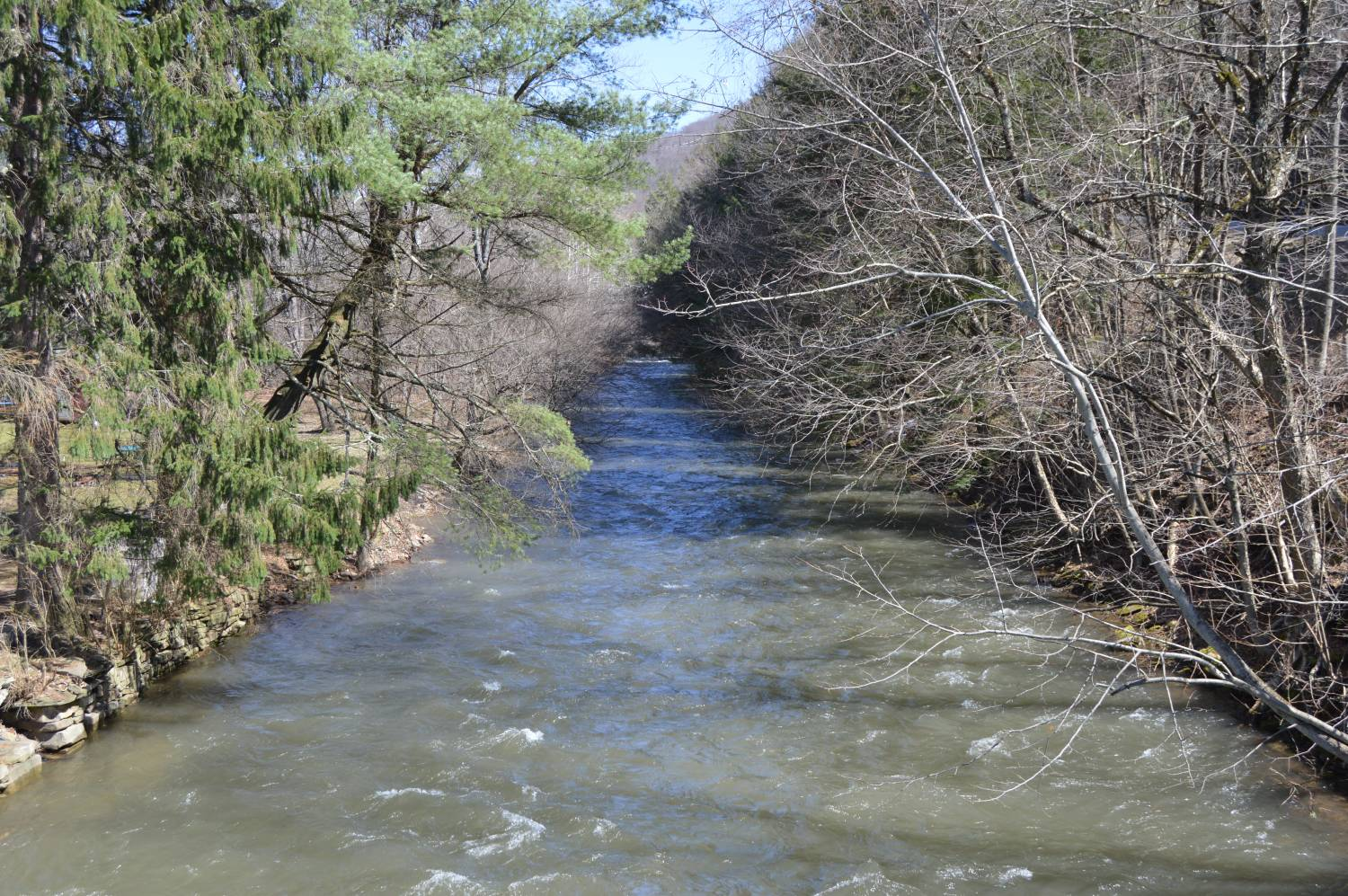 East Fork Sinnemahoning Creek at Wharton - Photo Credit: By Nyttend - Own work, Public Domain, https://commons.wikimedia.org/w/index.php?curid=39695970