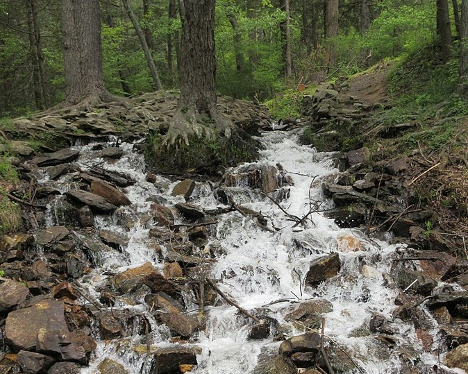 Caledonia Falls - Photo Credit: VitaleBaby at English Wikipedia [Public domain], from Wikimedia Commons