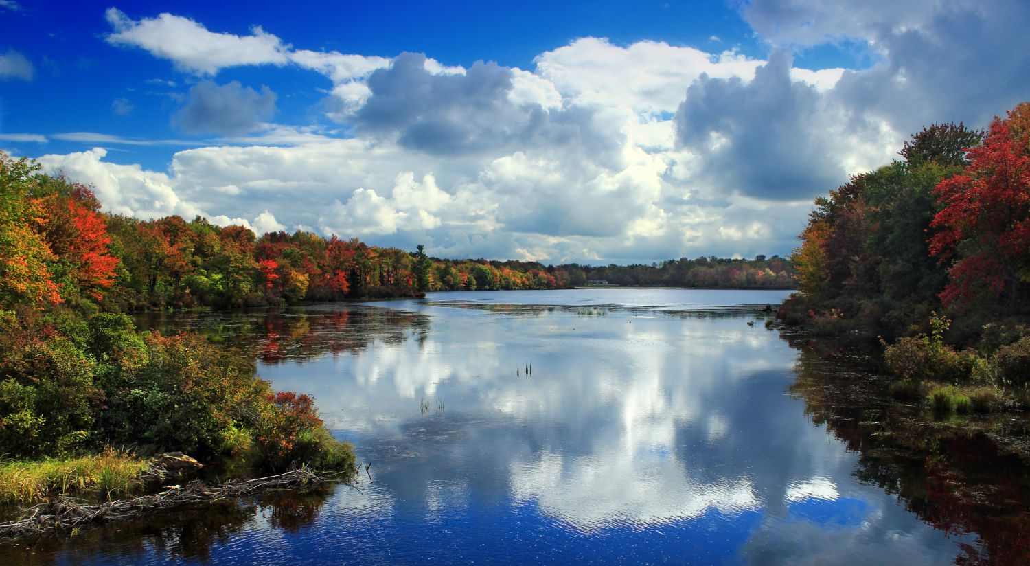 """""""Tobyhanna State Park"""" - Photo Credit: Nicholas A. Tonelli from Northeast Pennsylvania, USA [CC BY 2.0 (https://creativecommons.org/licenses/by/2.0)], via Wikimedia Commons - no changes made"""