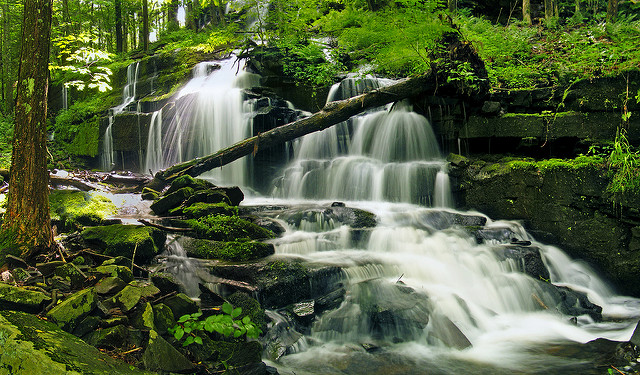 Stairway Falls (lower part), Pike County, within the Stairway Wild Area of Delaware State Forest - Photo Credit: Nicholas A. Tonelli - cc logo  Attribution 2.0 Generic (CC BY 2.0) - no changes made