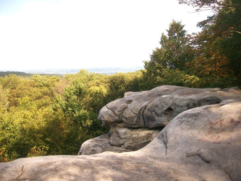 Beam Rocks, Forbes State Forest - Photo Credit: VitaleBaby (talk) (Uploads) [Public domain], from Wikimedia Commons