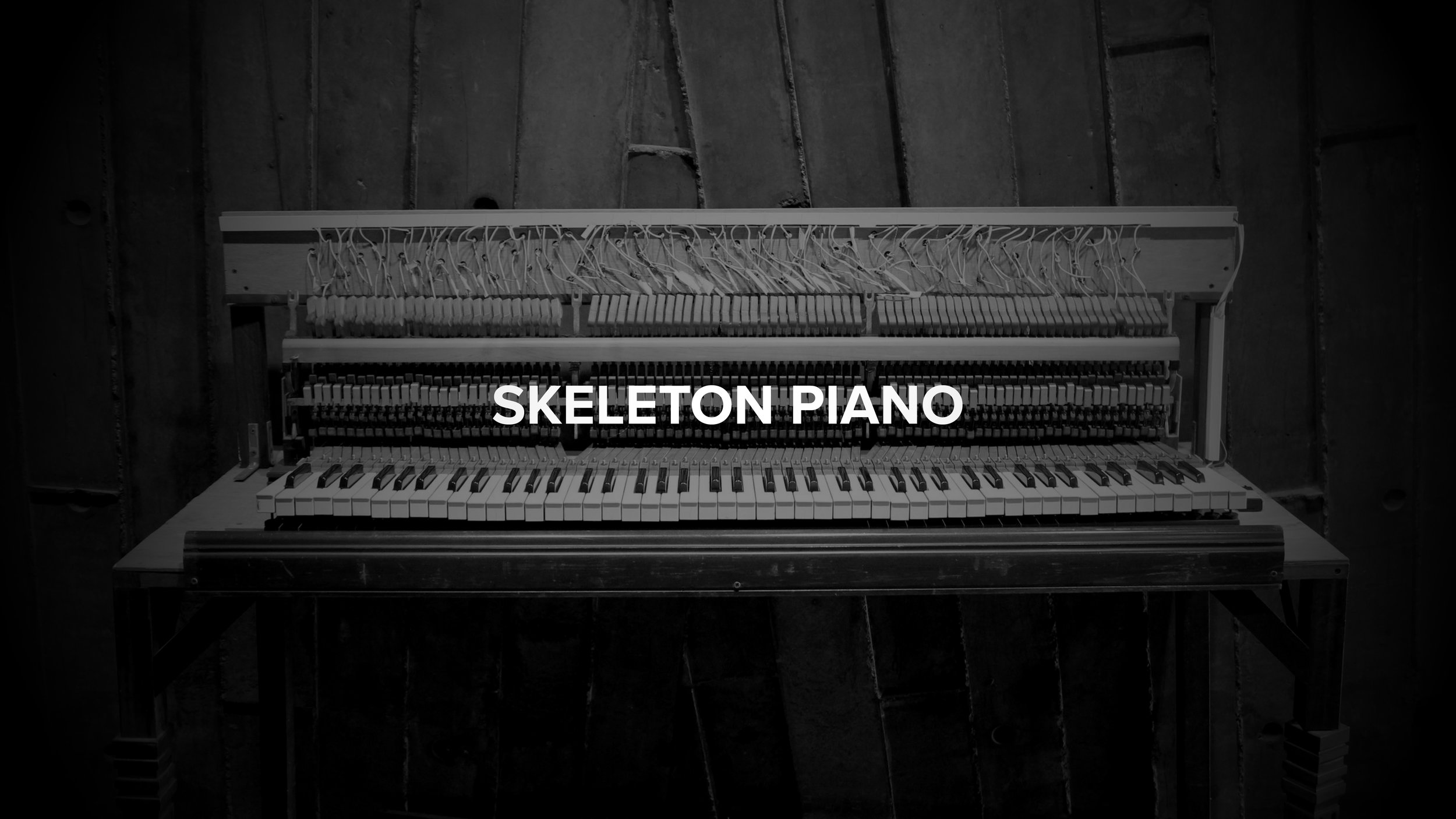 Skeleton Piano - A Mysterious dissection in beijing