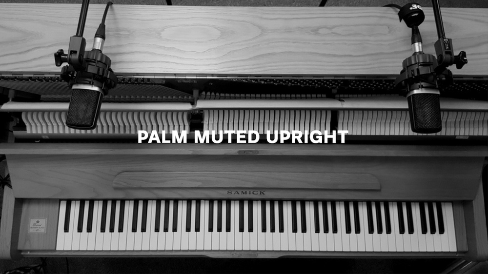 Palm Muted Upright Text.jpg