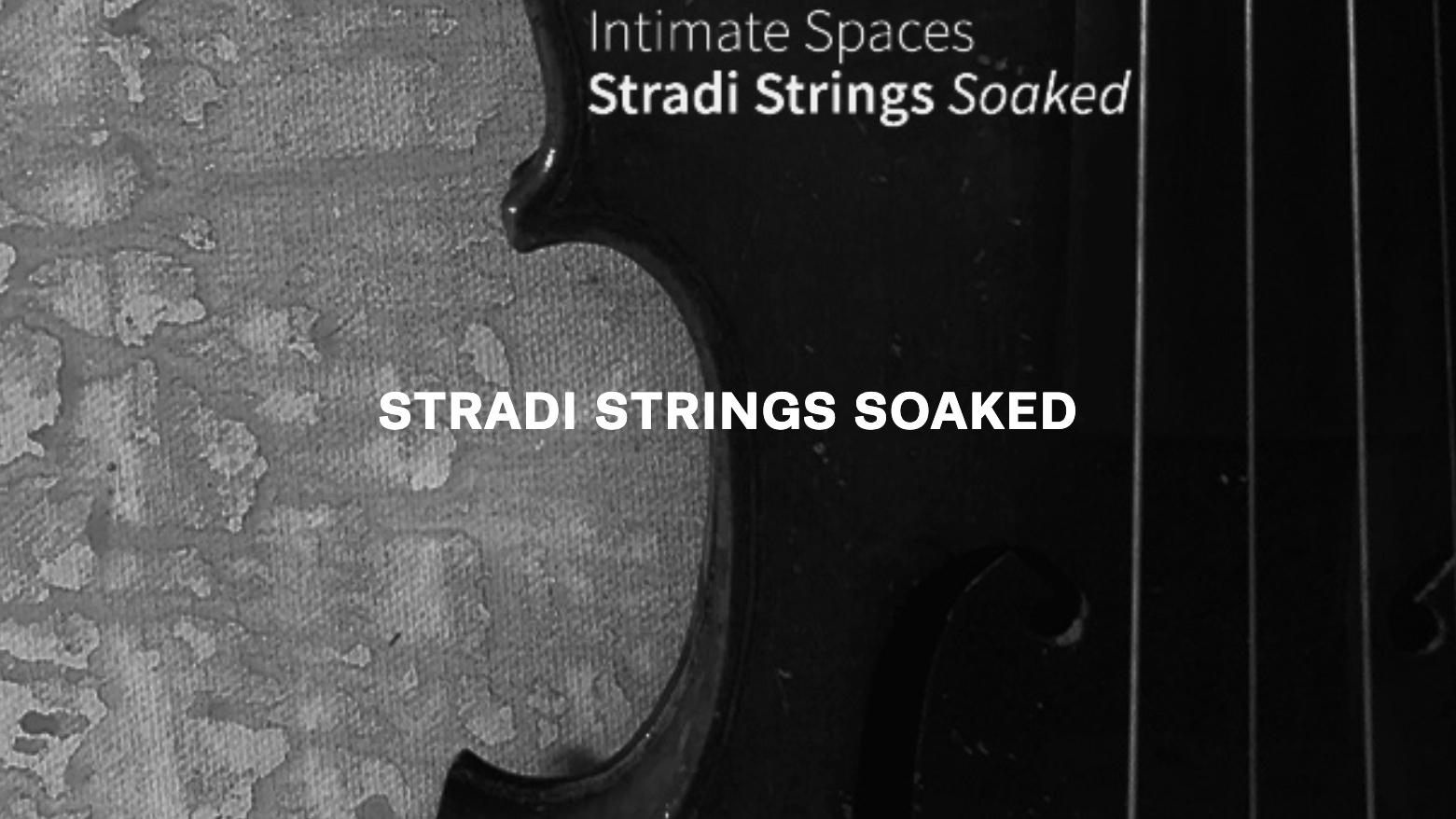 stradi strings text.jpg