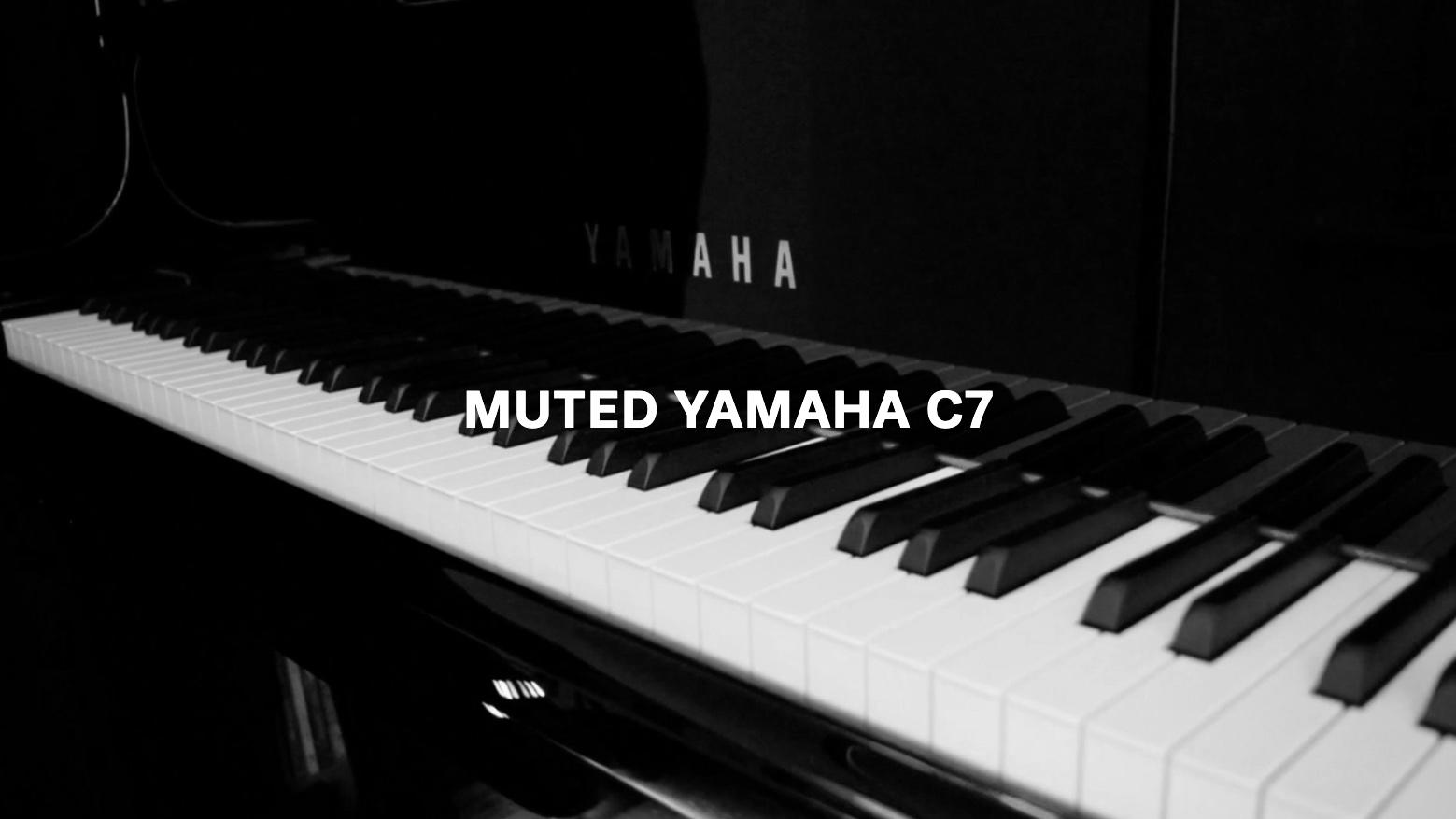 Yamaha DC7 Calandra - 1 Text.jpg