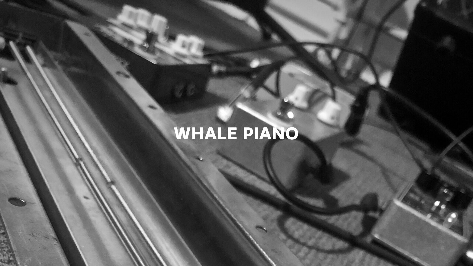Whale Piano Text.jpg