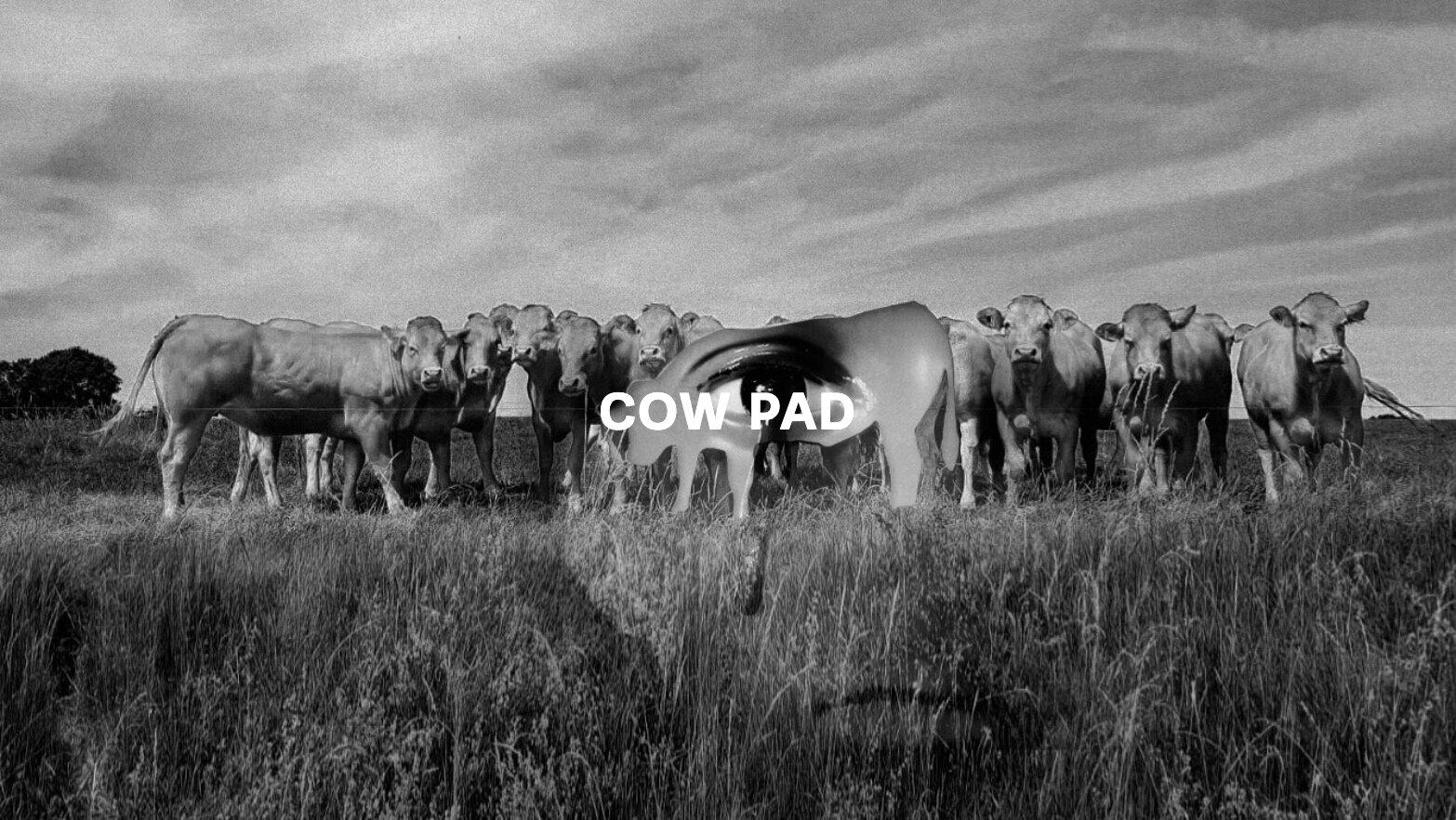 Cow Pad Text.jpg