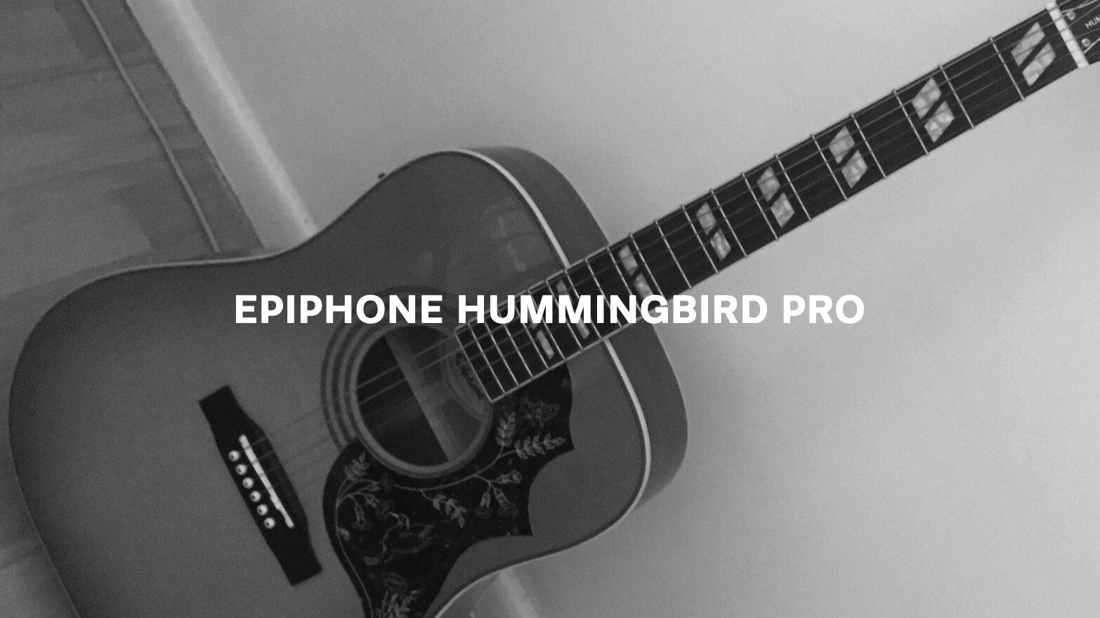 Hummingbird Pro Text.jpg