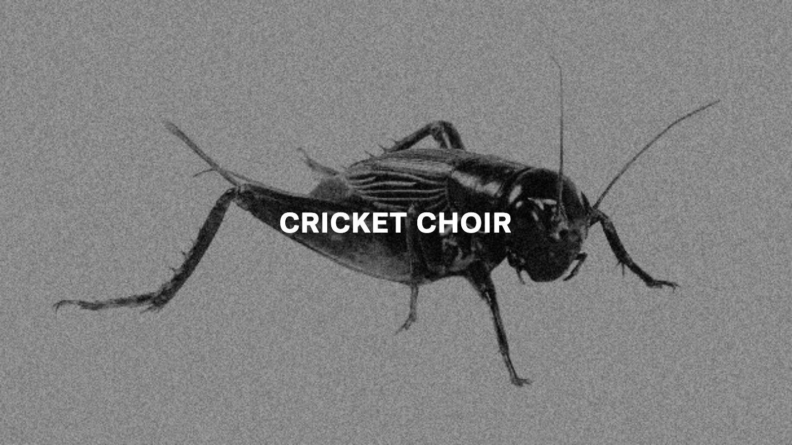 Cricket Choir Text.jpg