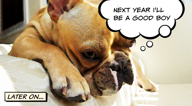 DOG_resolutions[1].png