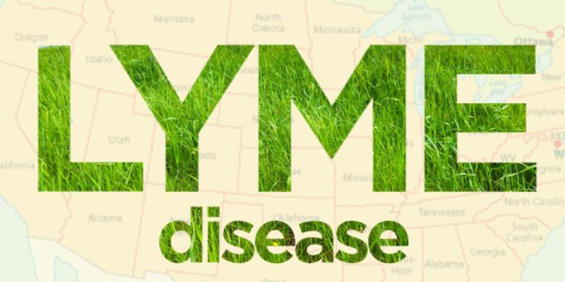 Lyme - Eliminate brain fog, joint pain, fatigue, headaches, etc.