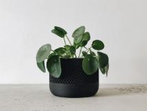 Black Planter by Minimum Design