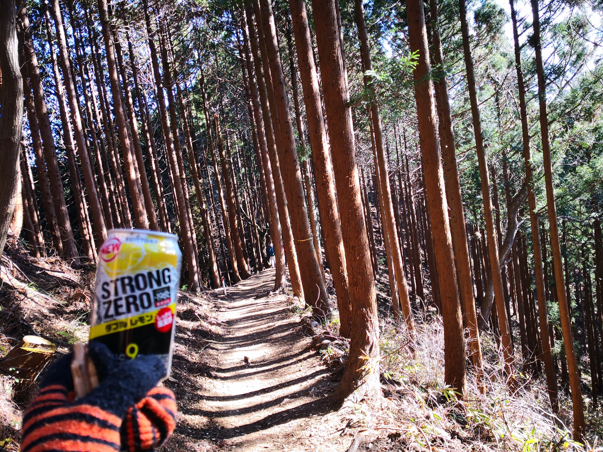 Forest chuhike (chuhai + hike)