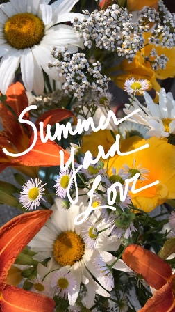 Summer Yard Love daisy daylilly.jpg
