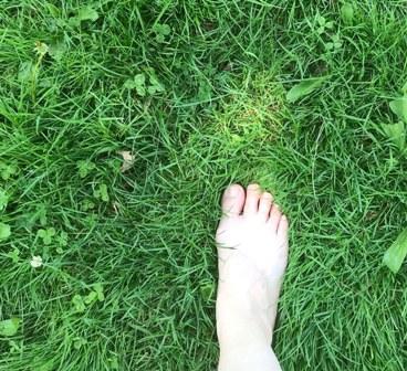 bare feet in grass.jpg
