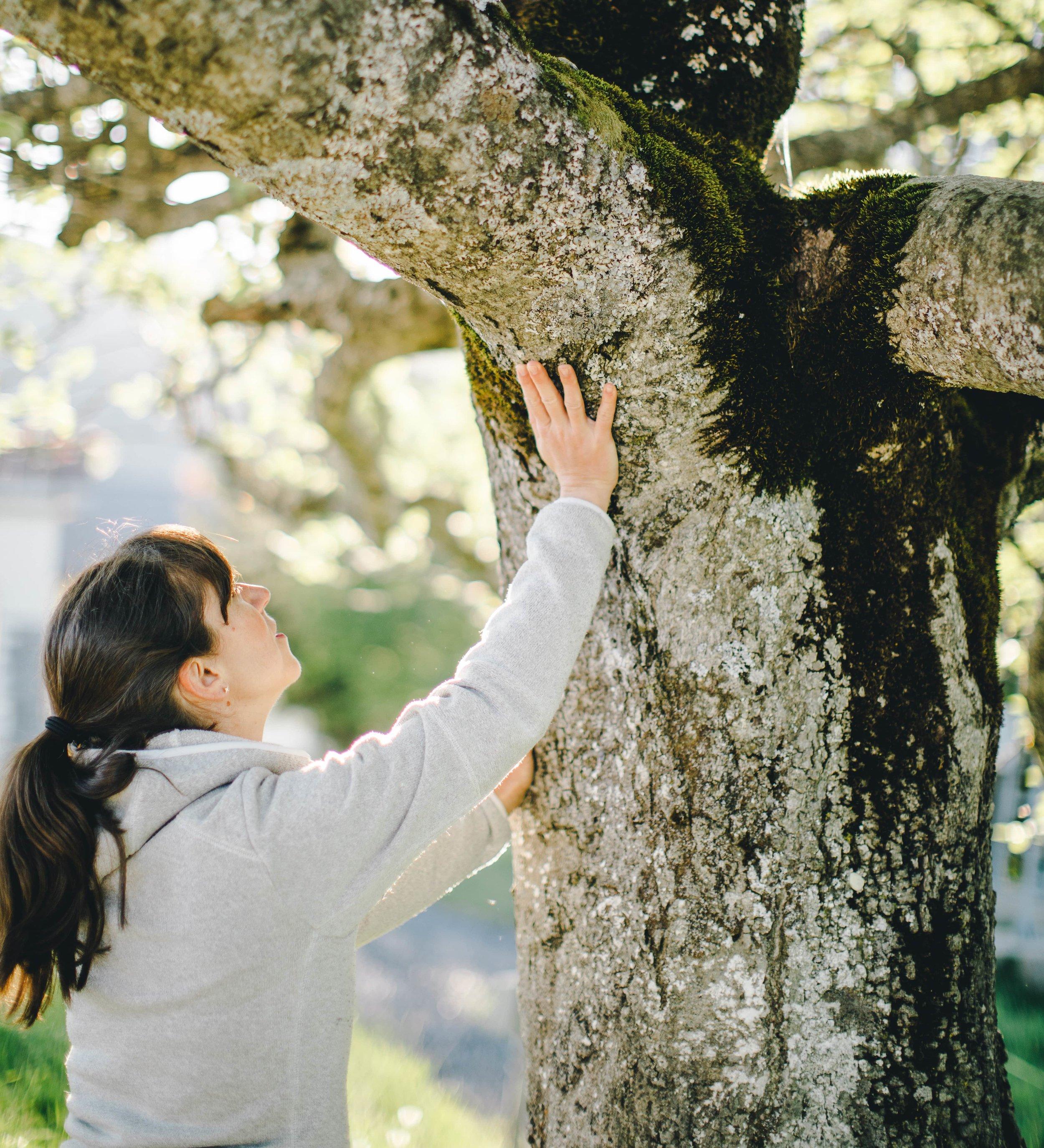 Juni Ritual Bäume-min.jpg