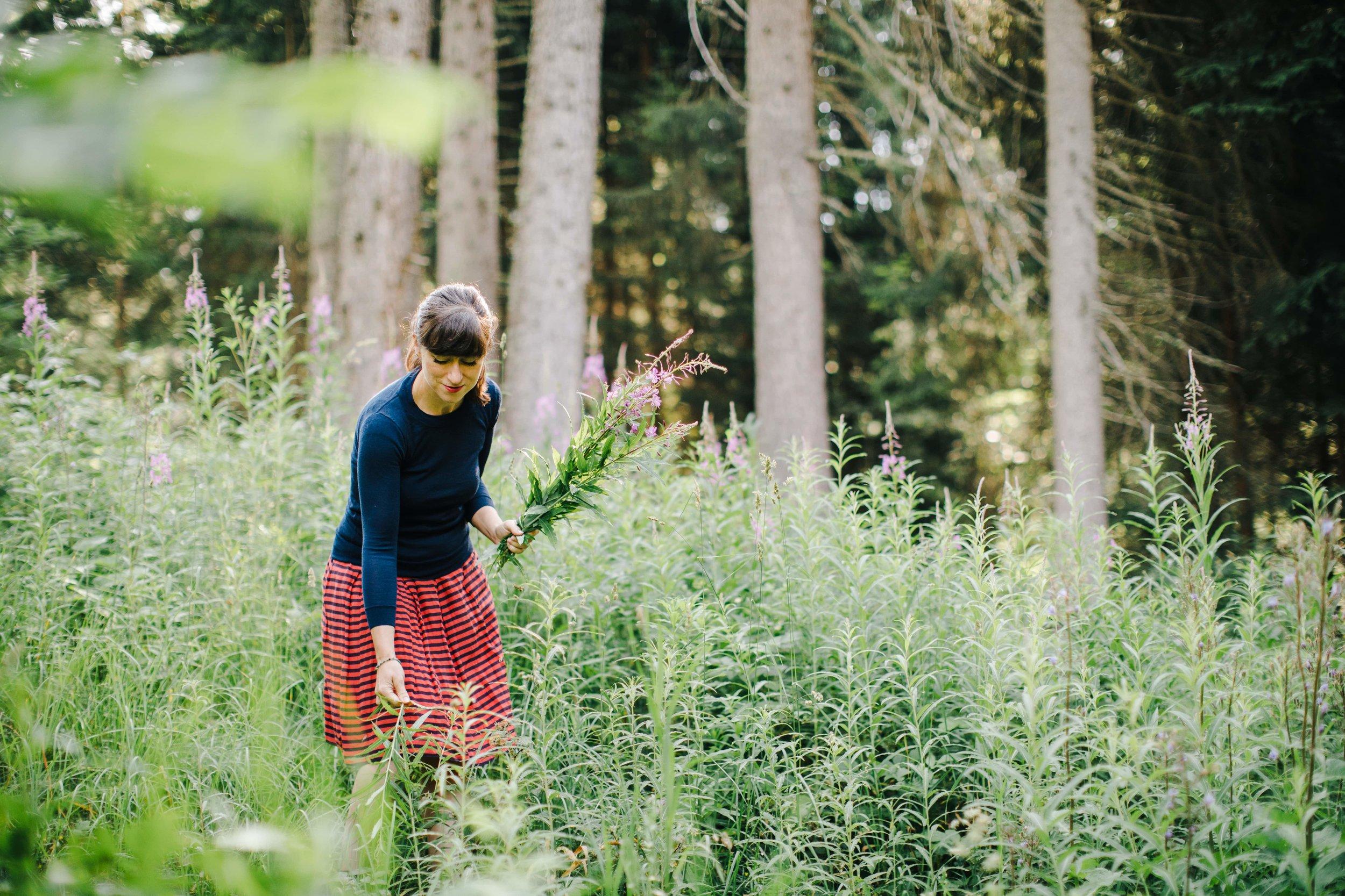 August _kleine Ernte_Susana.jpg