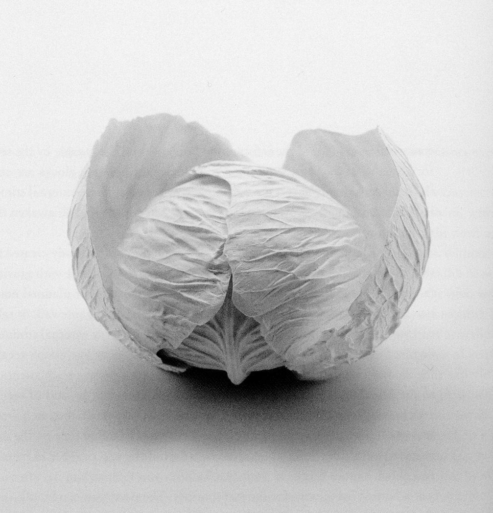 Paper clay cabbage bowls