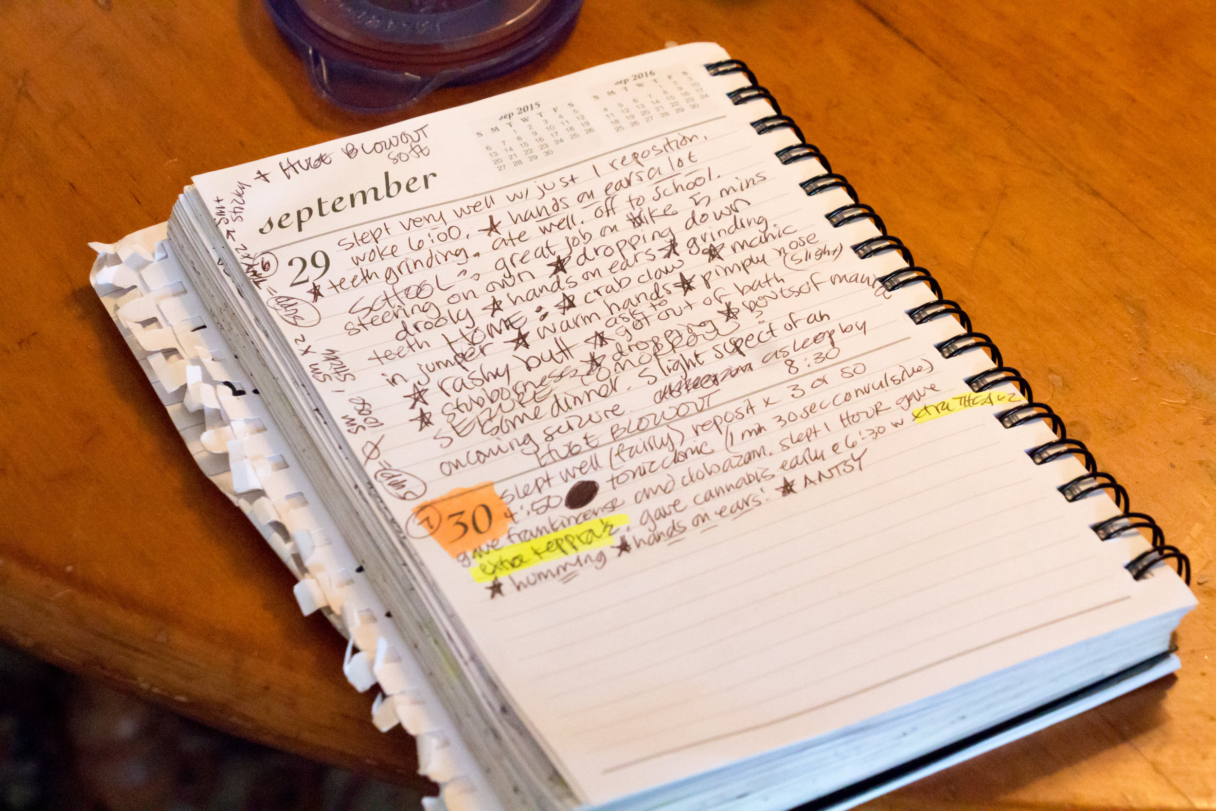 For most of her son's life Christy Shake has kept a detailed daily log of her son's behaviors, his medicines, his symptoms, his bowel movements. The notes have helped her learn to predict when a grand mal seizure is imminent.  Several stars are a warning and orange highlighter indicates a grand mal seizure.