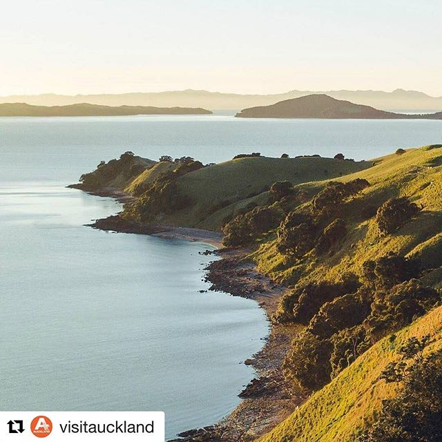 #Repost @visitauckland (@get_repost) ・・・ A different angle of Duder Regional Park by @louievtong #visitauckland