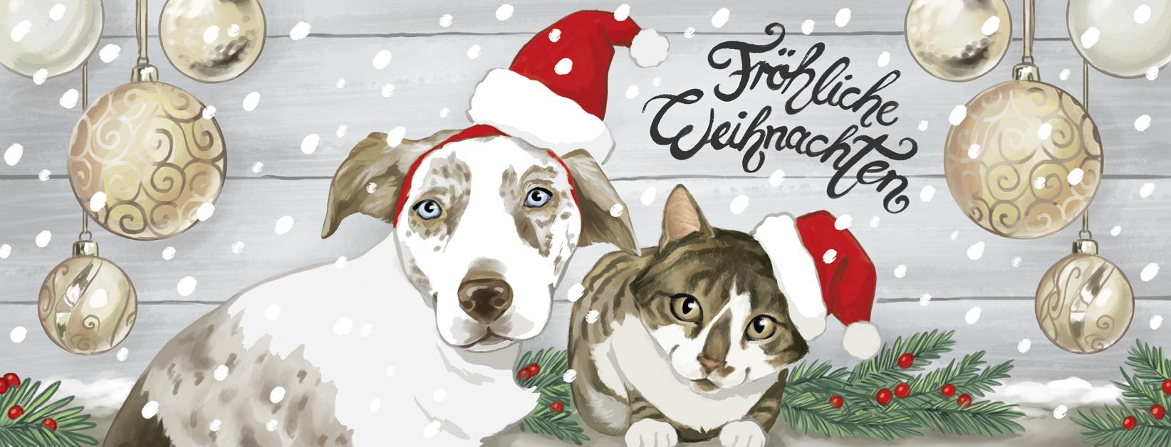 181203_weihnachtstitel_fb2.jpg