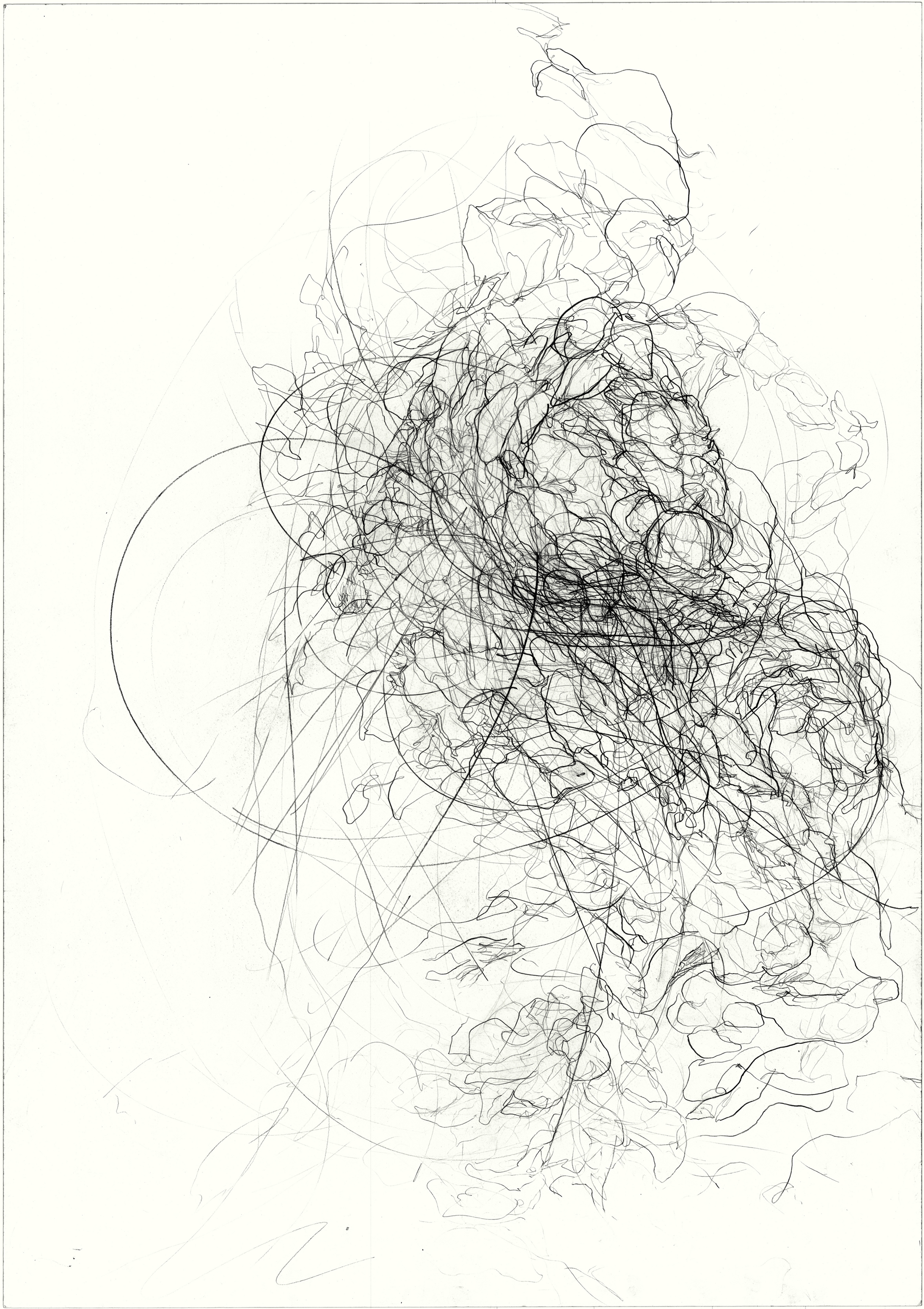Absorb  2011, pencil on paper, 84.1 cm x 59.5 cm.
