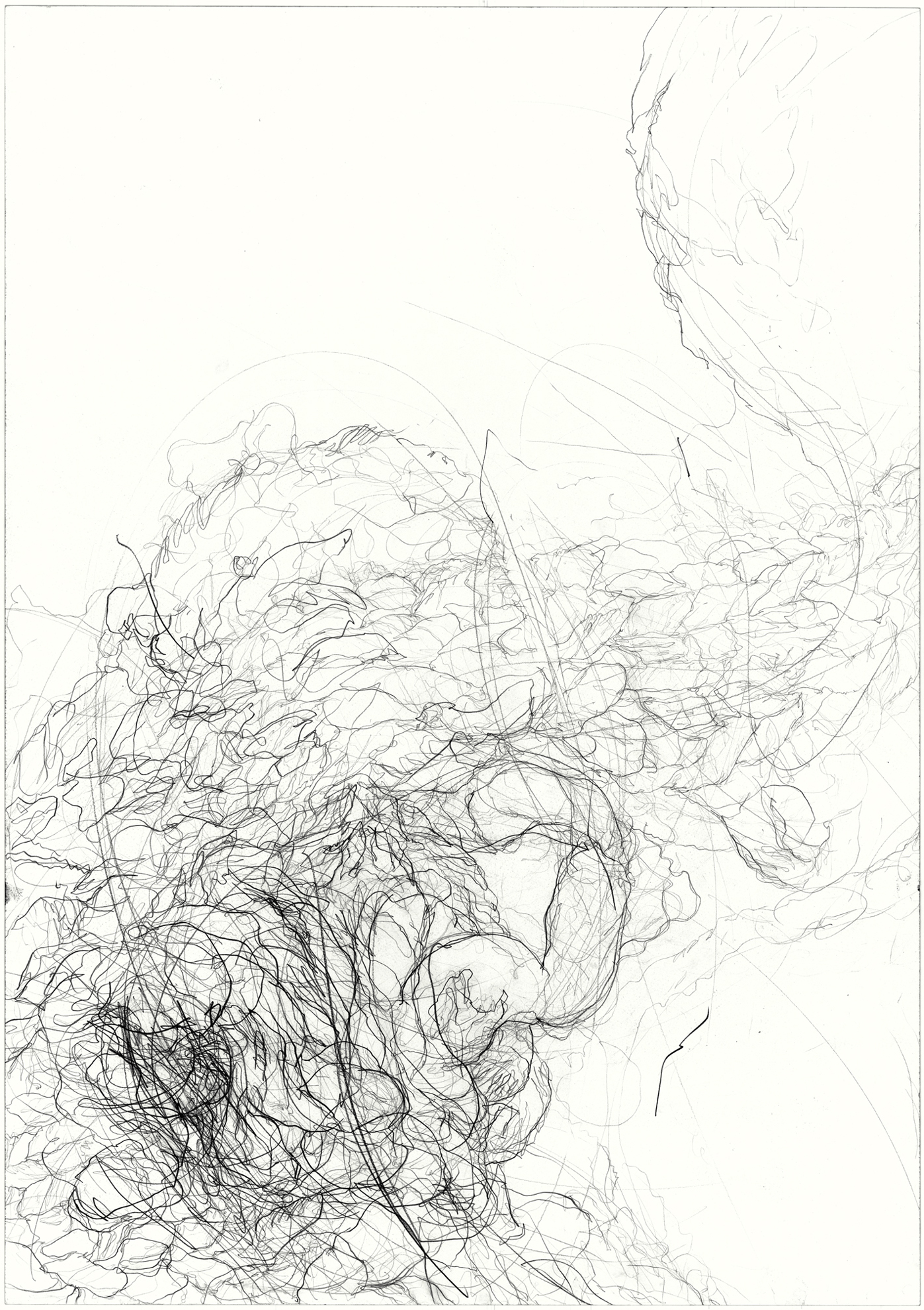 Undercurrent  2011, pencil on paper, 84.1 cm x 59.5 cm.