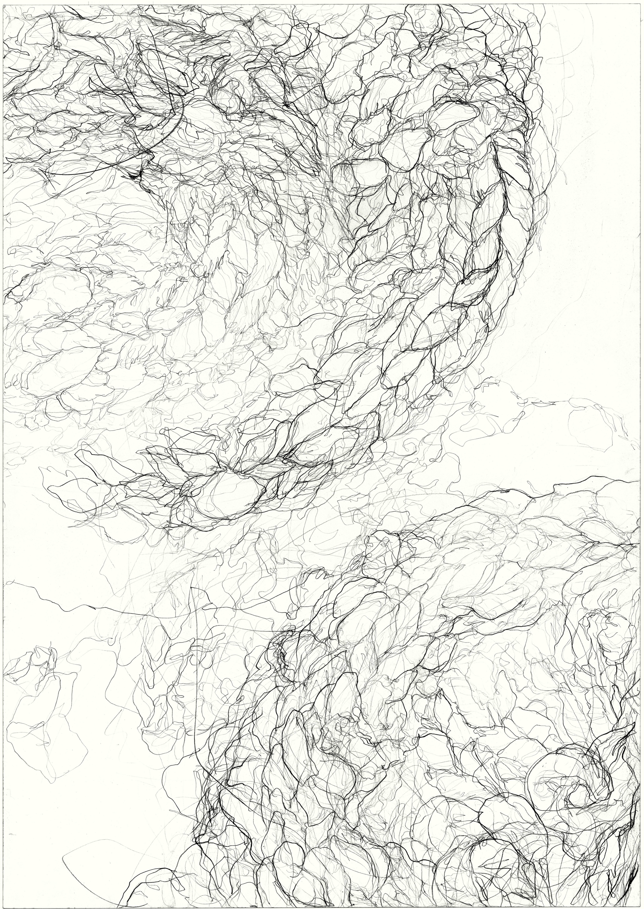 Dyskinesia  2011, pencil on paper, 84.1 cm x 59.5 cm.