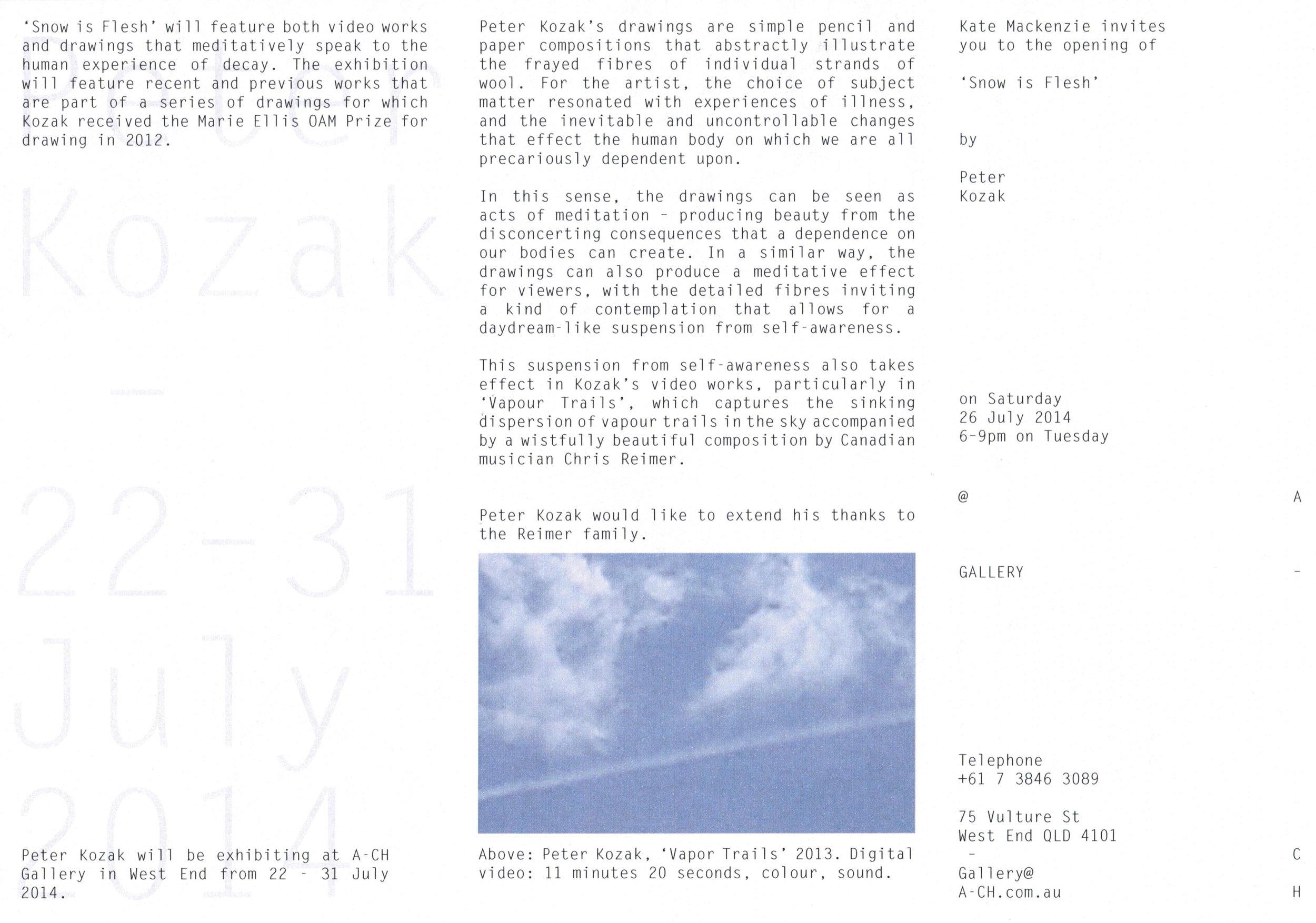 Snow Is Flesh - Flyer 01.jpg