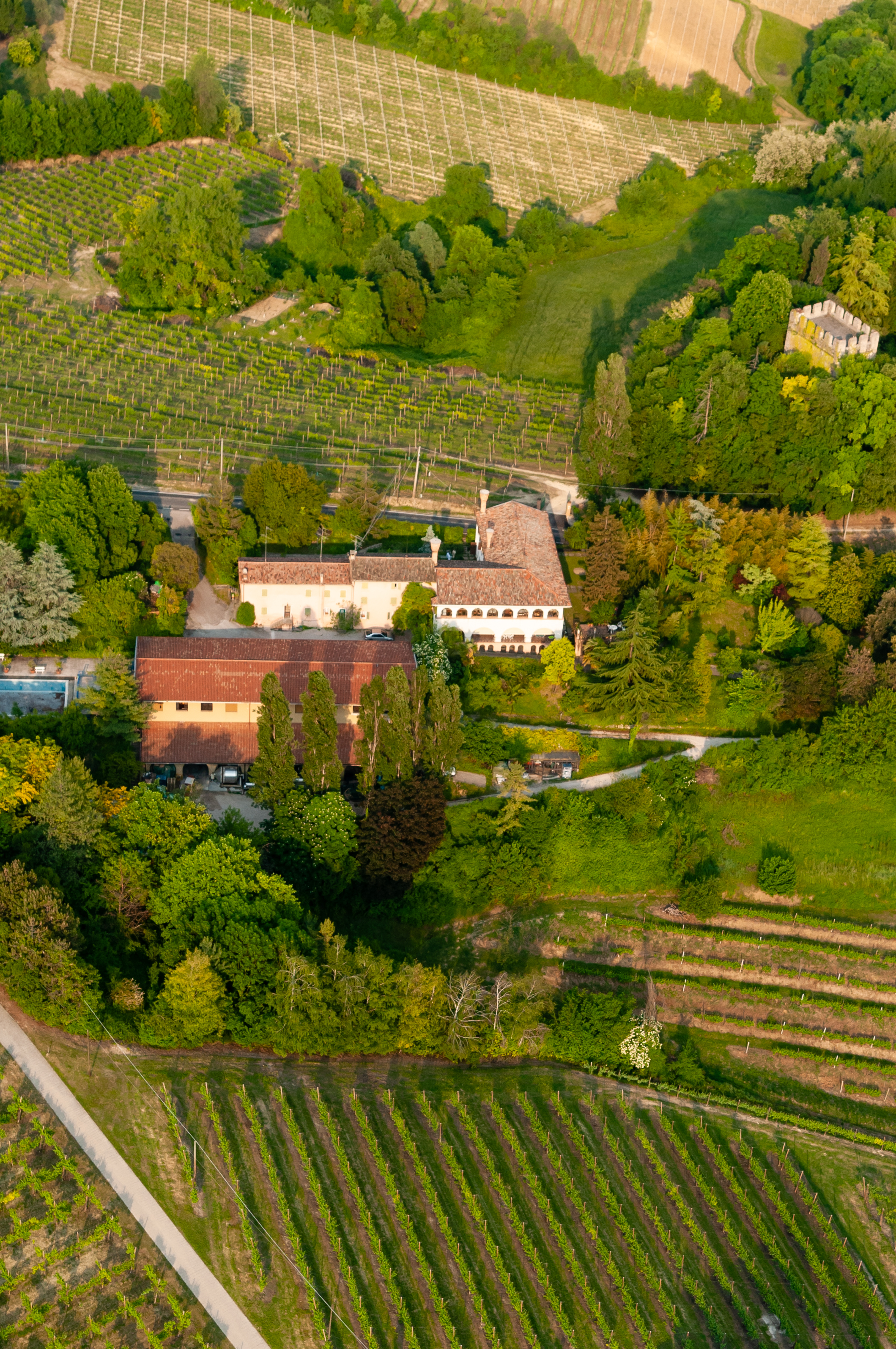 View of the Tenuta di Collalbrigo cellar and its surrounding vineyards.